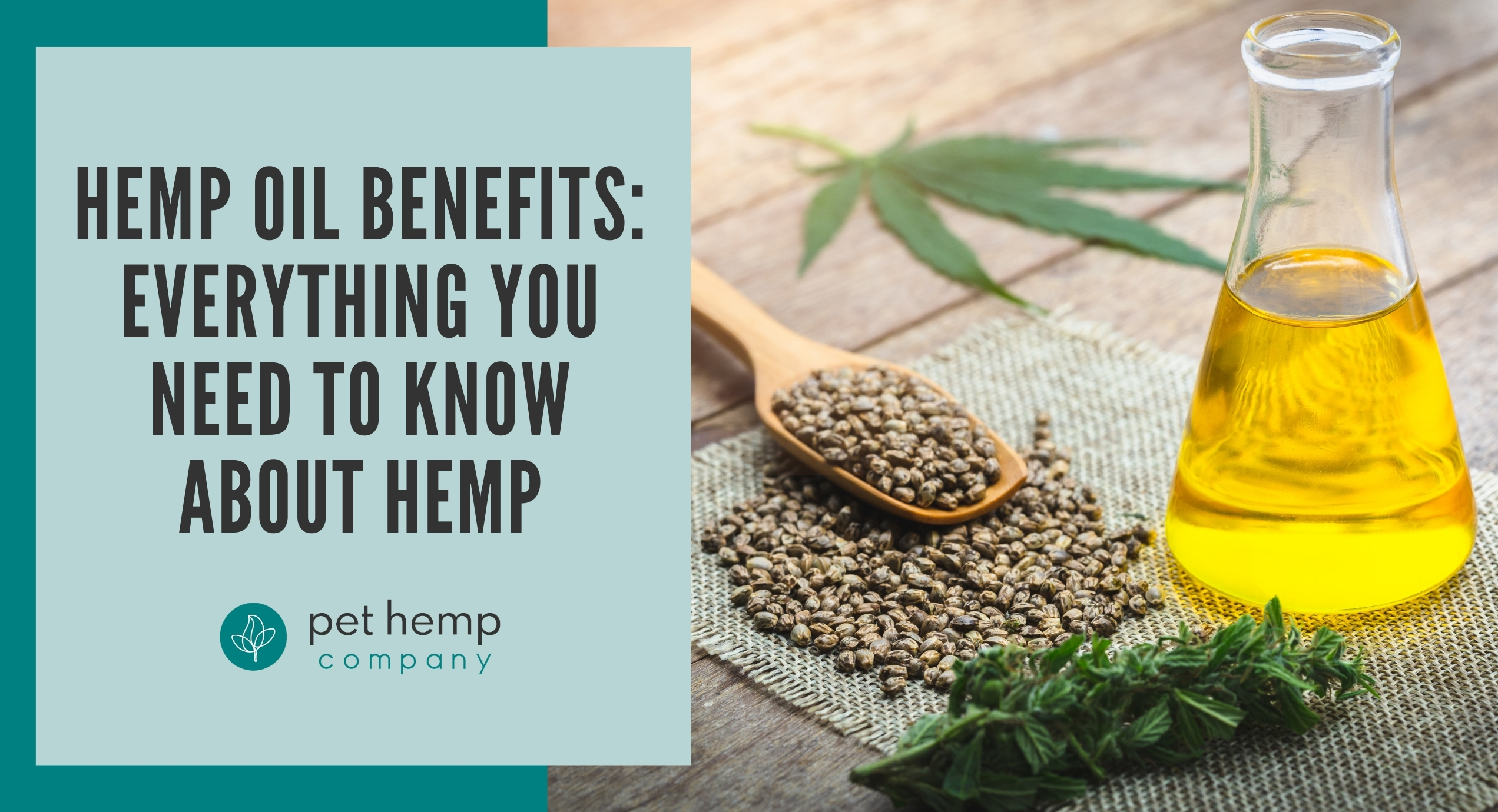 hemp oil benefits everything you need to know about hemp