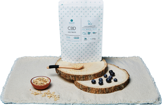 vector file of cbd products on a cutting board with blueberries